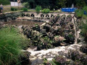 Vypuštěný rybník u Zikešů