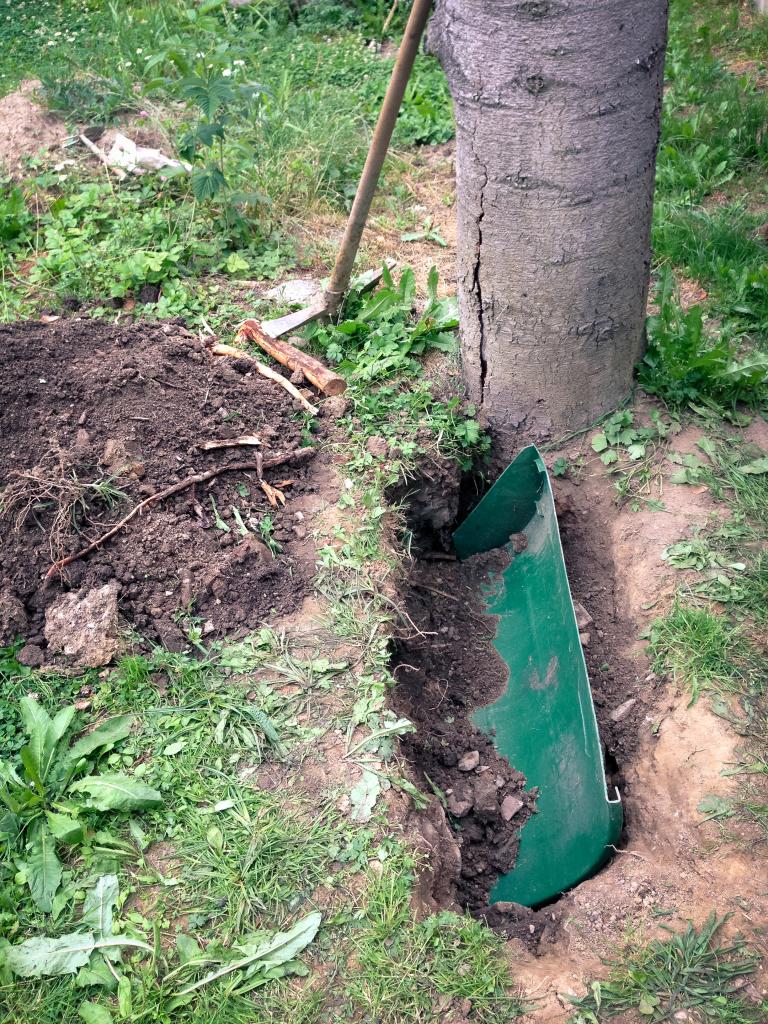 Kořenová zábrana, aby bambus neutíkal k sousedce