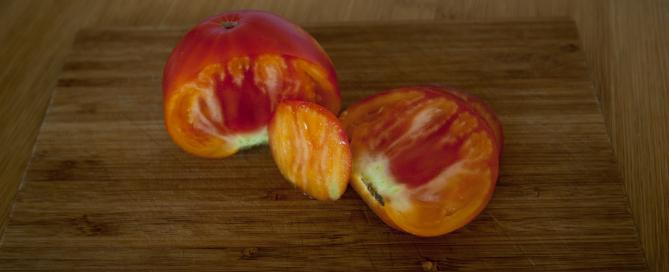 Ochutnávka rajčete 3