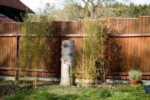 Živý plot je odkrytý