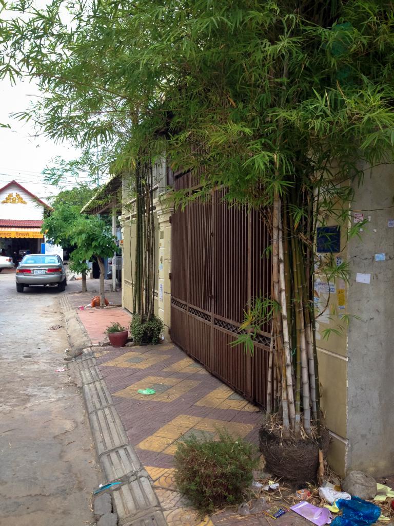 """Bambus """"v květináči"""" (Phnom Penh)"""