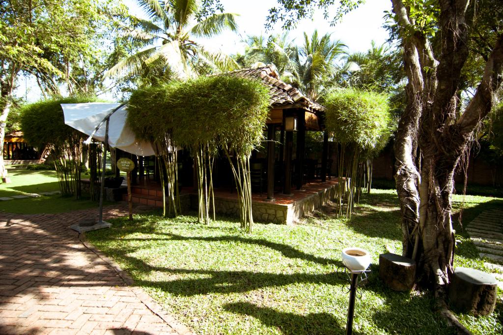Upravené bambusy