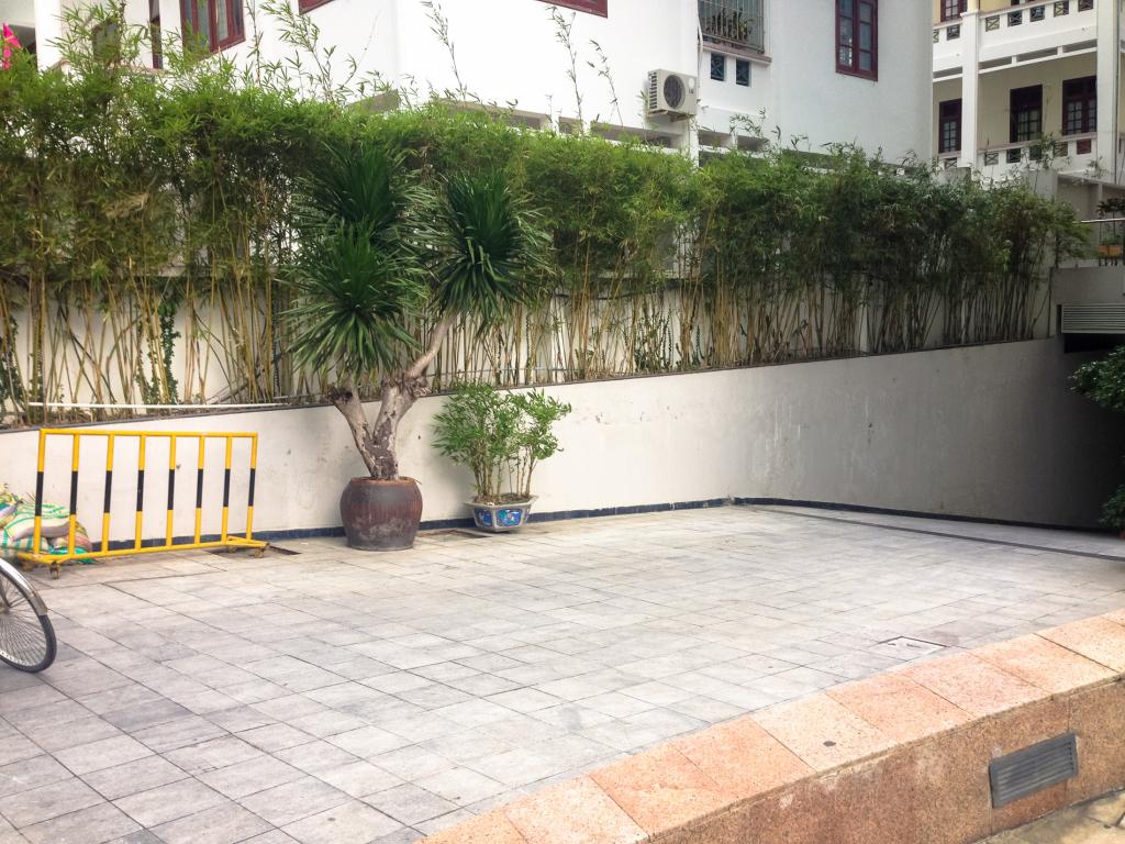 Bambusová zástěna