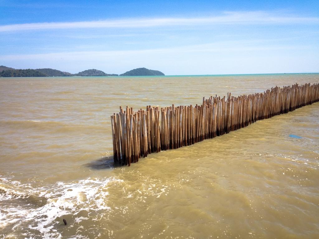Bambusové kůly v oceánu. Důvod neznám.
