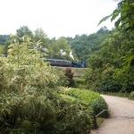 Nad bambusáriem jezdí výletní parní vlak